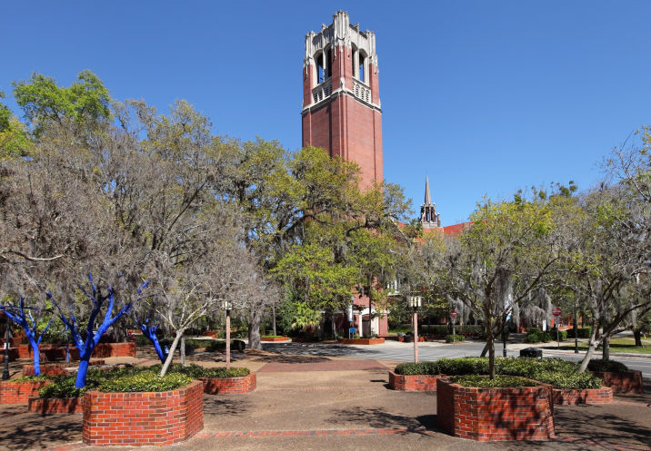The Drifter - UF campus